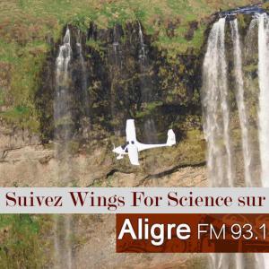 Wings-Aligre-4